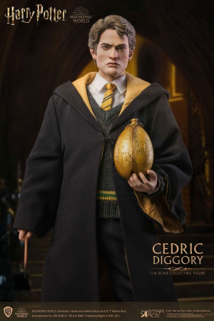 star-ace-toys-harry-potter-cedric-diggory-deluxe-version-my-favourite-movie-actionfigur_STACSA0069_2.jpg