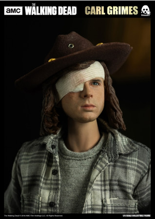 the-walking-dead-carl-grimes-16-actionfigur-29-cm_3Z0062_2.jpg