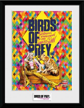 birds-of-prey-poster-im-rahmen-one-sheet-hyena-gb-eye_GYE-PFC3621_2.jpg