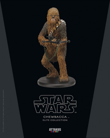 chewbacca-elite-collection-statue-110-star-wars-a-new-hope-22-cm_ATEC32_2.jpg