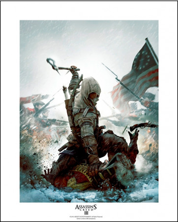 assassins-creed-collector-artprint-fighting-for-freedom-50-x-40-cm_ABYART011_2.jpg