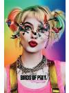 birds-of-prey-poster-seeing-stars-pyramid-international_PP34590_2.jpg