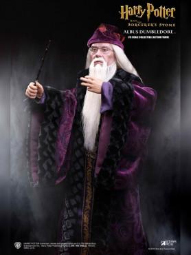 albus-dumbledore-my-favourite-movie-action-figur-16-aus-harry-potter-31-cm_STAC0005_2.jpg