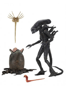 alien-1979-big-chap-ultimate-40th-anniversary-actionfigur-23-cm_NECA51646_2.jpg