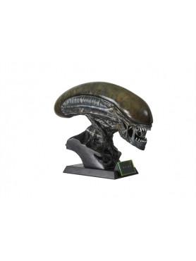 alien-covenant-xenomorph-life-size-bste-inkl_-led-beleuchteter-base-56-cm_MMALIEN-CO-B-1_2.jpg