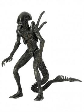 alien-warrior-actionfigur-aus-alien-vs-predator-23-cm_NECA51601_2.jpg