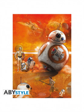 bb-8-poster-zu-star-wars-episode-vii-the-force-awakens-98-x-68-cm_ABYDCO331_2.jpg