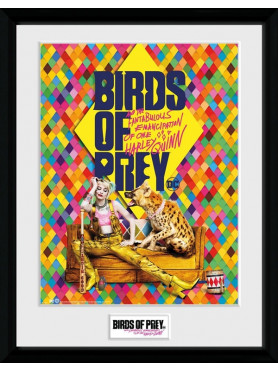 birds-of-prey-poster-im-rahmen-one-sheet-hyena-gb-eye_GYE-PFC3621_2.jpg