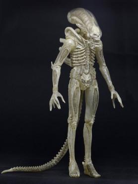concept-figure-79-alien-actionfigur-aus-alien-1979-23-cm_NECA51603_2.jpg