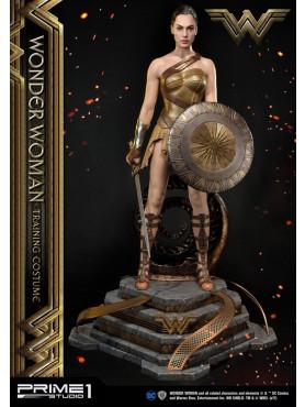dc-comics-wonder-woman-training-costume-statue-79-cm_P1SMMWW-01_2.jpg