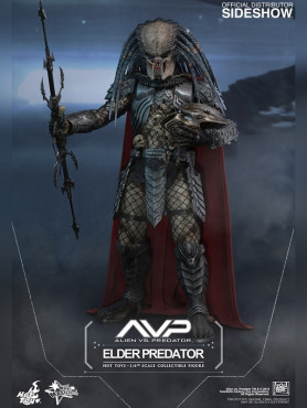 elder-predator-sixth-scale-figur-von-hot-toys-aus-alien-vs-prerdator-30-cm_S902567_2.jpg