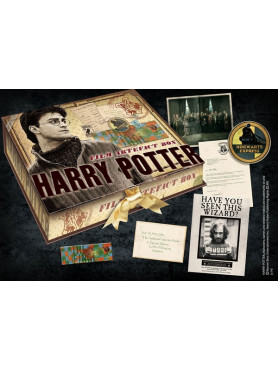 harry-potter-artefact-box-harry-potter_NOB7430_2.jpg
