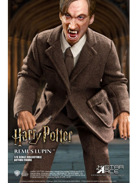 harry-potter-remus-lupin-my-favourite-movie-deluxe-actionfigur-star-ace-toys_STAC0075_2.jpg