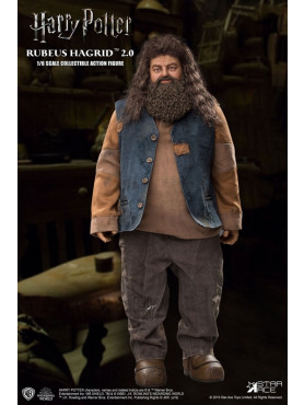 harry-potter-rubeus-hagrid-version-2-my-favourite-movie-actionfigur-star-ace_STAC0072_2.jpg