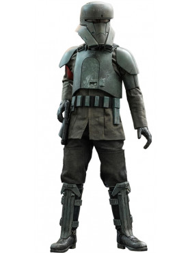 hot-toys-star-wars-the-mandalorian-transport-trooper-television-masterpiece-series-actionfigur_S9074512_2.jpg