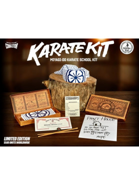 karate-kid-miyagi-do-karate-school-kit-limited-edition-doctor-collector_8TEE-DCKKID003_2.jpg