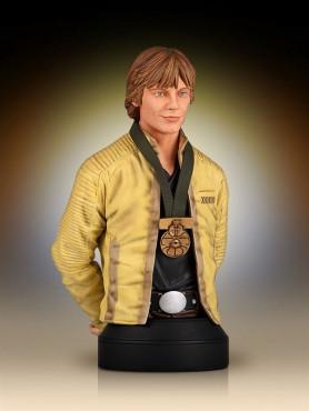 luke-skywalker-hero-of-yavin-limited-edition-bste-16-star-wars-17-cm_GG80462_2.jpg