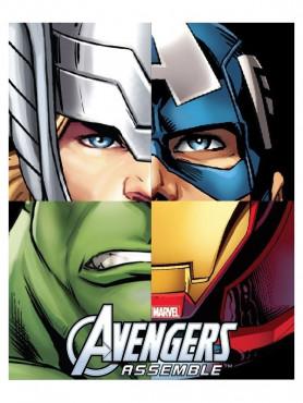 marvel-comics-fleecedecke-avengers-team-120-x-150-cm_CRW33798_2.jpg