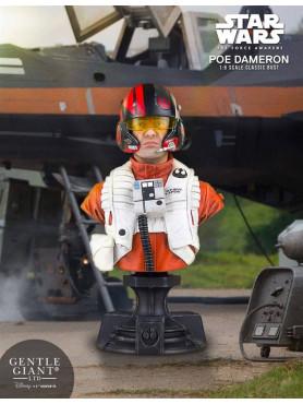 star-wars-episode-vii-poe-dameron-pgm-exclusive-16-bste-16-cm_GG80680_2.jpg
