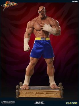 street-fighter-sagat-pcs-exclusive-13-statue-93-cm_PCSSAGAT13_2.jpg