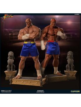 street-fighter-sagat-pcs-exclusive-evolution-13-statuen-set-93-cm_PCSSAGAT13EVO_2.jpg