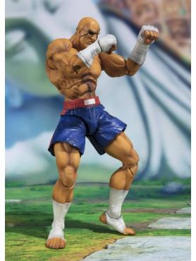 street-fighter-sagat-tamashii-web-exclusive-s_h_-figuarts-actionfigur-bandai-tamashii-nations_BTN56716-1_2.jpg