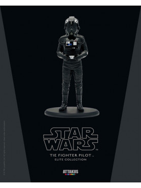 tie-fighter-pilot-elite-collection-statue-110-star-wars-a-nw-hope-18-cm_ATEC31_2.jpg