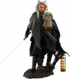 hot-toys-star-wars-the-mandalorian-ahsoka-tano-grogu-dx-series-actionfiguren_S908145_2.png
