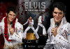 blitzway-elvis-aaron-presley-limited-edition-superb-scale-hybrid-statue_BW-SS-20701_6.jpg