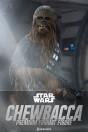 chewbacca-premium-format-figur-star-wars-episode-iv-60-cm_S300527_2.jpg