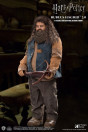 harry-potter-rubeus-hagrid-version-2-my-favourite-movie-actionfigur-star-ace_STAC0072_3.jpg