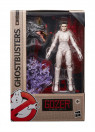 ghostbusters-2020-wave-1-plasma-series-actionfiguren-set-hasbro_HASE95545L00_12.jpg