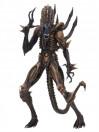 aliens-actionfiguren-serie-13-komplettsatz-3_NECA51667S_6.jpg