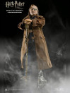 mad-eye-moody-my-favourite-movie-action-figure-16-harry-potter-30-cm_STAC0006_2.jpg