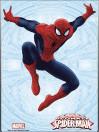 marvel-comics-steel-covers-stahlschild-spider-man-17-x-26-cm_SMSC1SM_3.jpg