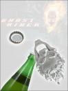 marvel-flaschenffner-ghost-rider_DIAM72380_4.jpg