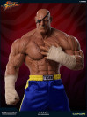 street-fighter-sagat-pcs-exclusive-13-statue-93-cm_PCSSAGAT13_12.jpg