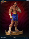 street-fighter-sagat-pcs-exclusive-13-statue-93-cm_PCSSAGAT13_8.jpg