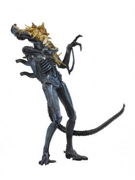 aliens-xenomorph-warrior-blue-battle-damaged-serie-12-actionfigur-23-cm_NECA51639_2.jpg