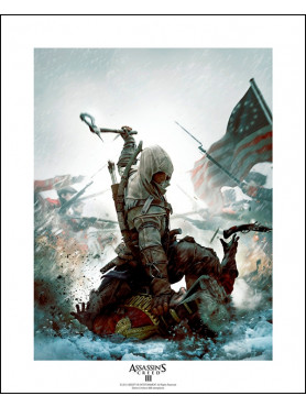 """Assassin´s Creed: Collector Artprint """"Fighting For Freedom"""""""
