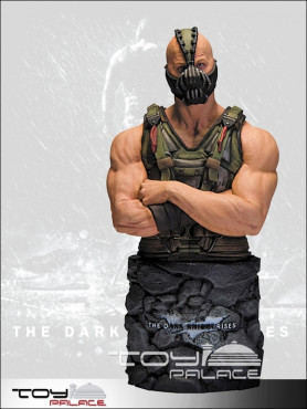 batman-the-dark-knight-rises-bste-bane-16-cm_DCD30876_2.jpg
