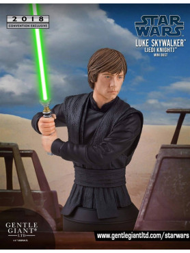 luke-skywalker-jedi-knight-16-bste-sdcc-2018-exclusive-16-cm_GG80859_2.jpg