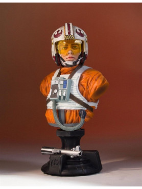 luke-x-wing-pilot-16-bste-40th-anniversary-sdcc-2017-exclusive-star-wars-episode-iv-17-cm_GG80773_2.jpg