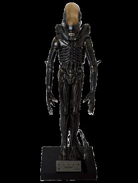 Aliens: Big Chap Alien - Statue