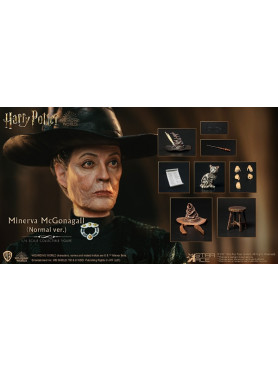 star-ace-toys-harry-potter-minerva-mcgonagall-normal-version-my-favourite-movie-actionfigur_STACSA0094_2.jpg