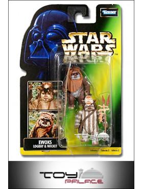 star-wars-power-of-the-force-2-ewoks-logray-wicket-grne-fotokarte-actionfigur_69711_2.jpg
