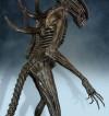 alien-xenomorph-covenant-14-statue-69-cm-exclusive-version_HCG9371_9.jpg