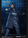 sirius-black-prisoner-version-my-favourite-movie-action-figure-16-harry-potter-30-cm_STAC0014_3.jpg
