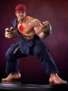 street-fighter-iv-evil-ryu-14-statue-42-cm_PCSEVILRYU005_9.jpg